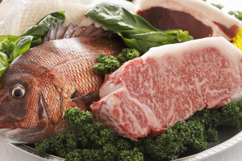 肉 魚 主原料 ドッグフード