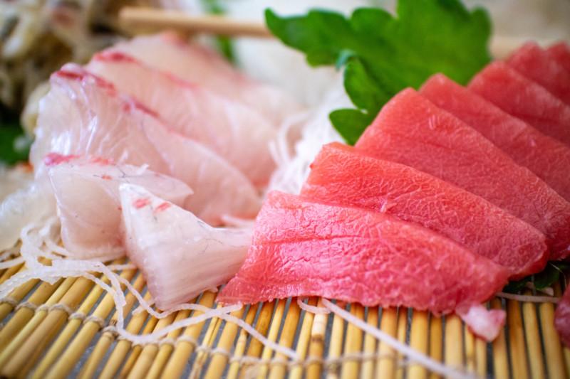 白身魚 赤身魚 青魚 ドッグフード