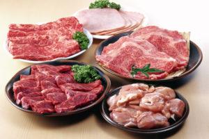 ドッグフード 肉