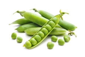 ドッグフード エンドウ豆