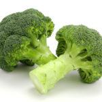ブロッコリー ドッグフード 野菜
