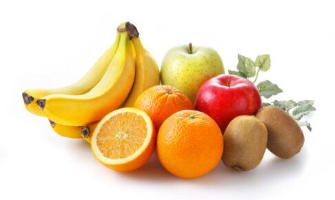 ドッグフード 果物 フルーツ