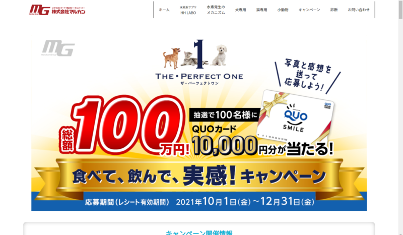 The・Perfect-One