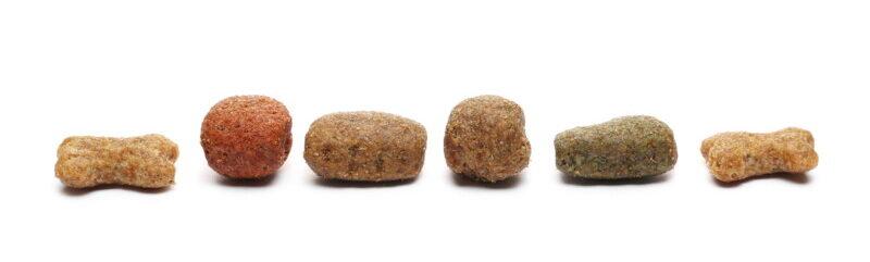ドッグフード 粒 サイズ